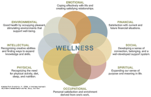 The 8 elements of wellness - develop each of these for a longer and healthier life.